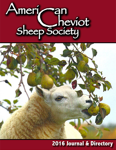 2016 Cheviot Journal